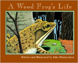 a wood frog's life