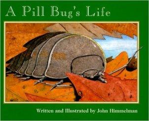 pill bug's life