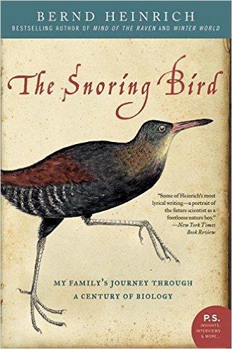 snoring bird.jpg