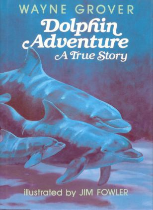 dolphin adventure.jpg